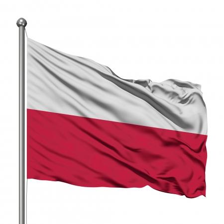 Polska Niepodległa! 11. 11. 2020 r. - świętuj bezpiecznie!