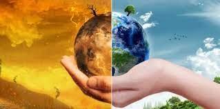 Sukcesy Fredrzan w wielkim teście edukacyjnym Planeta i Życie